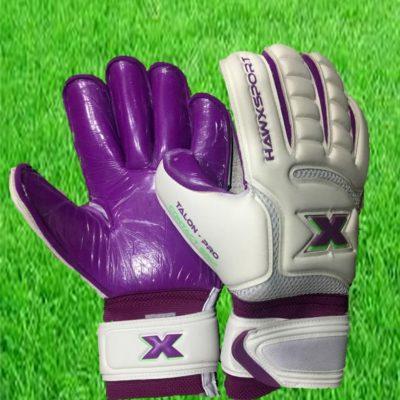 purple talon web pic 2